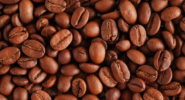 Why you should buy coffee beans wholesale? - Ranker Online