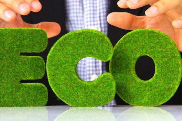 Businesses to be Eco-Friendly