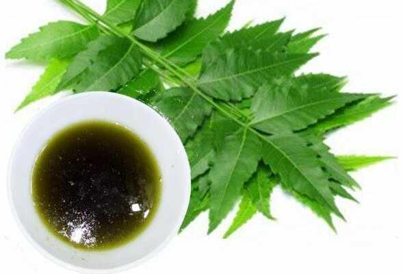Neem Oil Home Depot