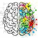 The Brain Explained: A Basic Guide to the Different Parts of the Brain